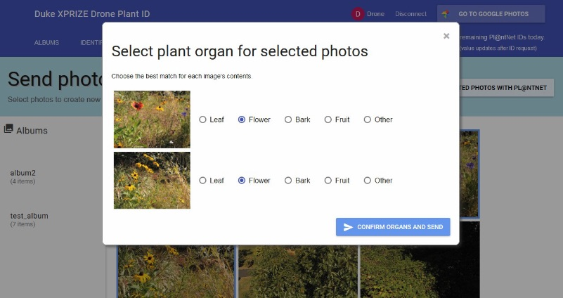 screen grab of the plant identification app